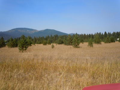 Rathdrum Residential Lots & Land For Sale: NKA W Boekel St