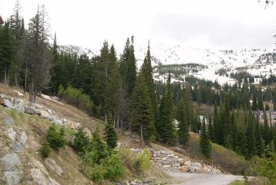 Sandpoint Residential Lots & Land For Sale: NNA Mogul Hill Lots 2 & 3