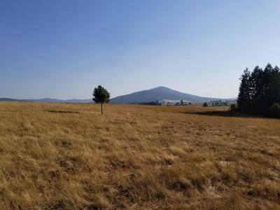 Benewah County Residential Lots & Land For Sale: NNA Canyon Ridge Ln