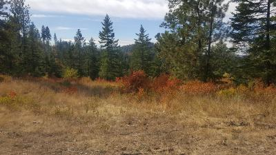 Benewah County Residential Lots & Land For Sale: 20 acres Coon Creek Rd