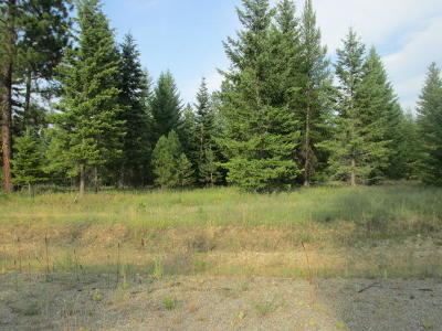 Priest River Residential Lots & Land For Sale: Lot 3 Douglas Clan Rd