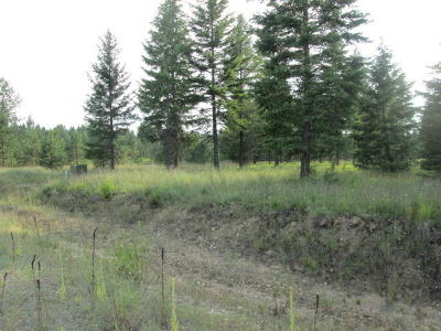 Priest River Residential Lots & Land For Sale: Lot 7 Douglas Clan Rd