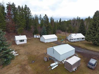 Coeur D'alene Single Family Home For Sale: 5602 W Kidd Island Rd