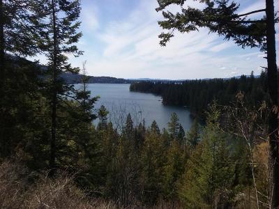 Hayden Residential Lots & Land For Sale: 13250 E Hayden Lake Dr