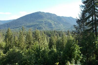 Clark Fork Residential Lots & Land For Sale: Lot 16 Bear Claw Road