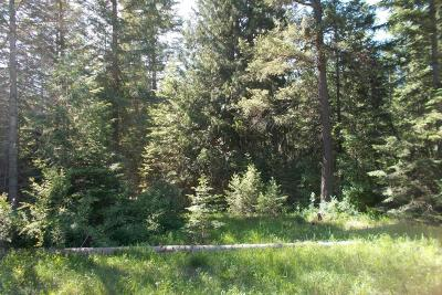 Clark Fork Residential Lots & Land For Sale: Lot 21 Bear Claw Road
