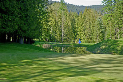 Sandpoint Residential Lots & Land For Sale: L1 B9 3rd S Idaho Club Drive