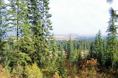 Coeur D'alene Residential Lots & Land For Sale: Lot 3 Rooster Road West