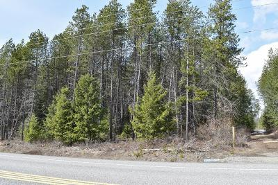 Rathdrum Residential Lots & Land For Sale: NNA Old Highway 95 Lt 3 Blk 1