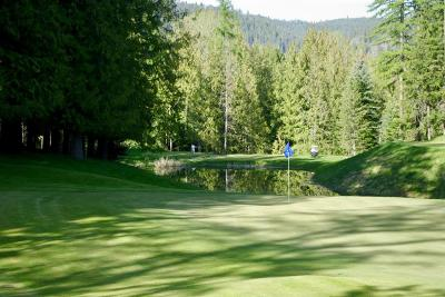 Sandpoint Residential Lots & Land For Sale: A-15 S Idaho Club Drive