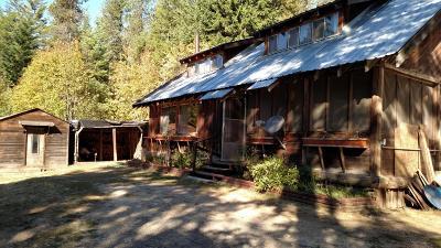 Bonner County, Kootenai County Single Family Home For Sale: 1055 Kreiger Creek Road