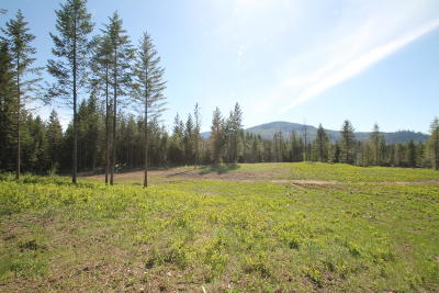 Rathdrum Residential Lots & Land For Sale: L1B1 Skiptooth Dr