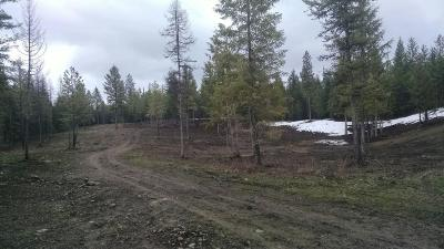 Rathdrum Residential Lots & Land For Sale: L2B1 Skiptooth Dr