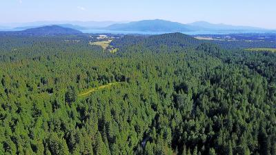 Sandpoint Residential Lots & Land For Sale: 6 lots Michael Lane