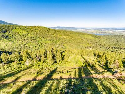 Post Falls Residential Lots & Land For Sale: Cablecreek