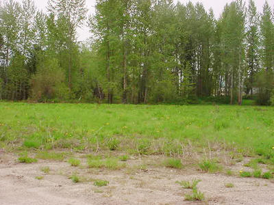 Sandpoint Residential Lots & Land For Sale: NNA Great Northern Road