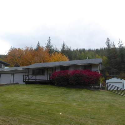 Single Family Home For Sale: 414 E Park Dr