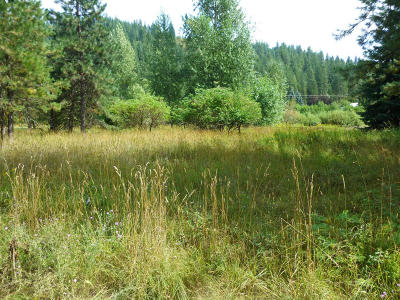 Coeur D'alene Residential Lots & Land For Sale: 12795 E Reeva Rd