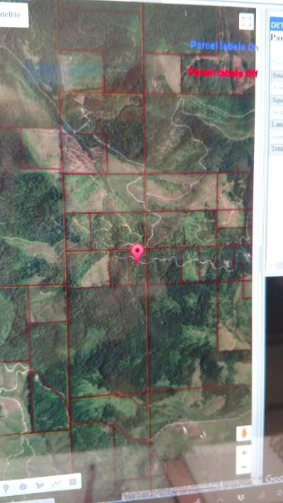 St. Maries ID Residential Lots & Land For Sale: $48,500