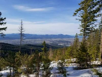 Post Falls Residential Lots & Land For Sale: NKA S Blossom Mountain