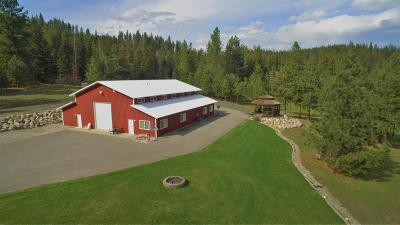 Coeur D'alene Residential Lots & Land For Sale: 4148 W Cielo View Ct