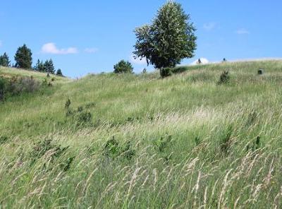 Coeur D'alene Residential Lots & Land For Sale: NKA Bellgrove