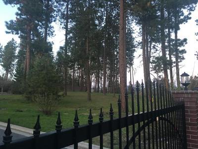 Post Falls Residential Lots & Land For Sale: 875 N Coles Loop