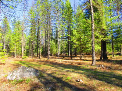 Rathdrum Residential Lots & Land For Sale: NKA W Seasons Rd
