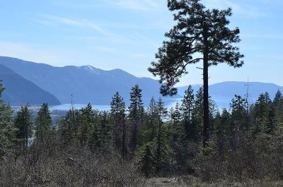 Clark Fork Residential Lots & Land For Sale: 3013 Majestic Mountain