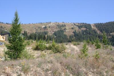 Sandpoint Residential Lots & Land For Sale: NNA Chutes Ln