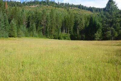 Priest River Residential Lots & Land For Sale: 350 Buckskin Flat Road