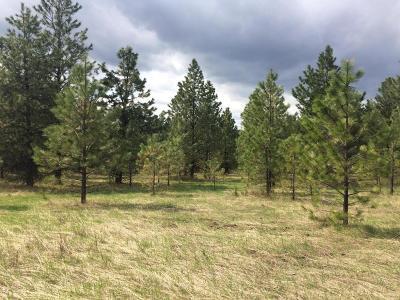 Benewah County Residential Lots & Land For Sale: NKA Grey Pony Ln