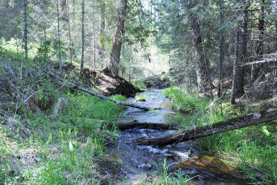 Priest River Residential Lots & Land For Sale: 706 Sanborn Creek Road