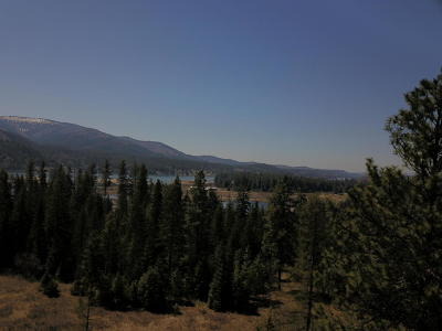 Sandpoint Residential Lots & Land For Sale: Lot 1 Lobo Ranch