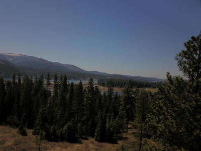 Sandpoint Residential Lots & Land For Sale: Lot 2 Lobo Ranch