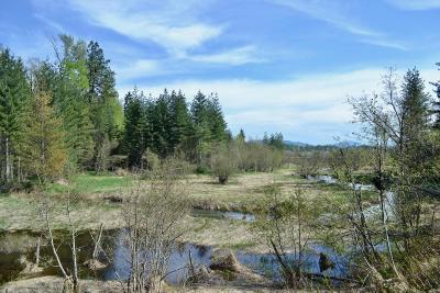 Sandpoint Residential Lots & Land For Sale: 37 Selle