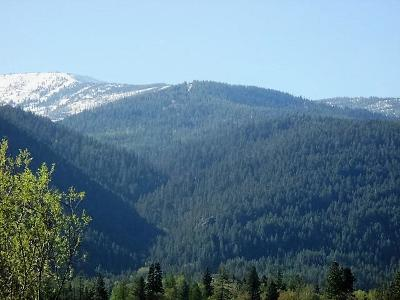 Sandpoint ID Residential Lots & Land For Sale: $85,000