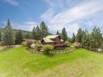 Post Falls Single Family Home For Sale: 3018 S Signal Point Rd