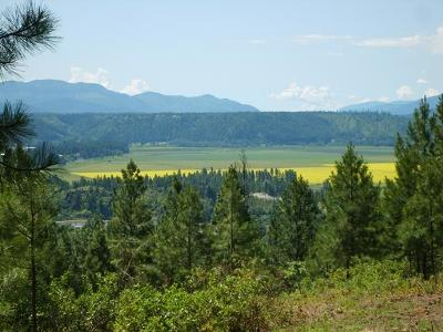 Bonners Ferry Residential Lots & Land For Sale: Nna Chokecherry