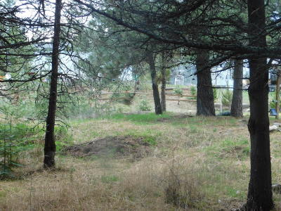 Newport Residential Lots & Land For Sale: 42 Gow Dr