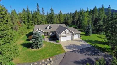 Rathdrum Single Family Home For Sale: 26011 N. Wendler Loop