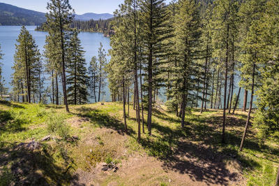 Coeur D'alene Residential Lots & Land For Sale: 7502 S Newtons Way