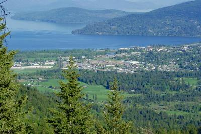 Sandpoint Residential Lots & Land For Sale: Lot 2 Vista Lago Jeep Trail Rd.