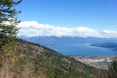 Sandpoint Residential Lots & Land For Sale: Lot 4 Vista Lago Jeep Trail Rd