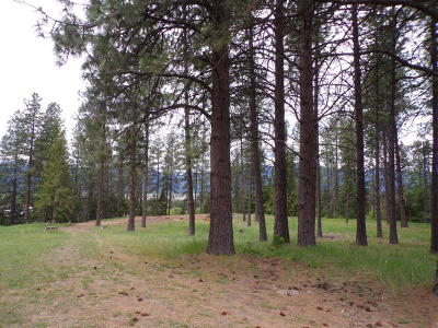 Bonners Ferry Residential Lots & Land For Sale: Nna Tannenbaum Circle