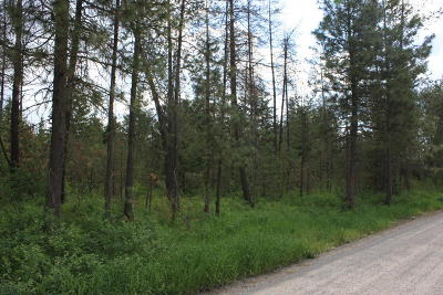 Rathdrum Residential Lots & Land For Sale: NNA Haney