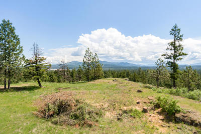 Rathdrum Residential Lots & Land For Sale: 20661 N Roundy Rd