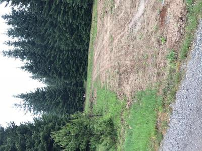 Bonners Ferry Residential Lots & Land For Sale: NNA Cougar Rd