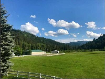 Coeur D'alene Single Family Home For Sale: 1351 S Meyers Hill Rd