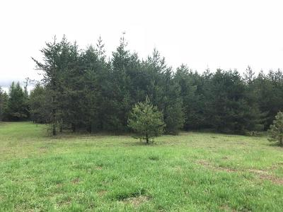 Priest River Residential Lots & Land For Sale: 141 Breezy Way